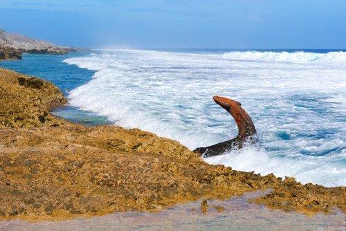Mangaia shipwreck