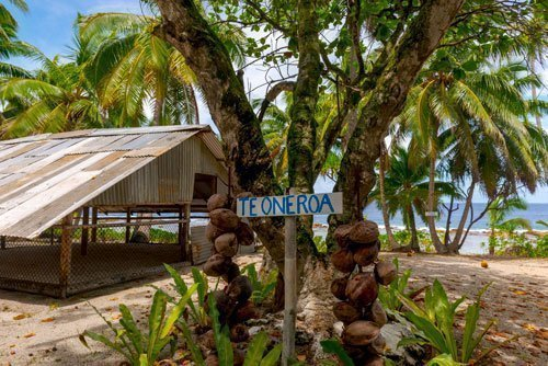 Mauke beach garden
