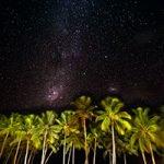 StarsPalms