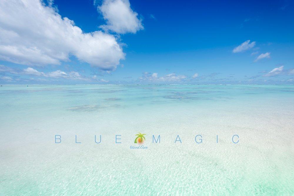 Blue Magic IA 2