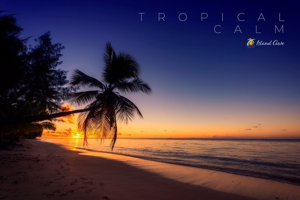 Tropical Calm AI 2