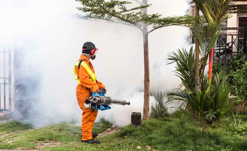 IslandAwe Tiger mosquito spraying